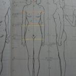 男女の身体の描き分けは?ポイントをまとめてみた